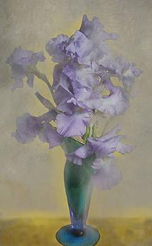 Iris in a vase by Jeff Burgess