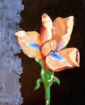Iris In Coral by Karen Conine