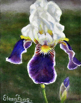 Iris in Meadow by Eileen  Fong