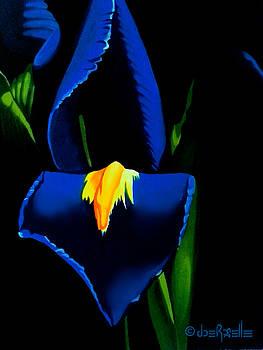 Iris by Joe Roselle