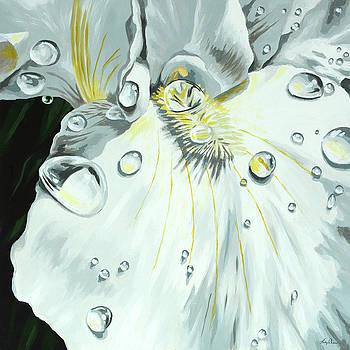 Iris by Lesley Alexander