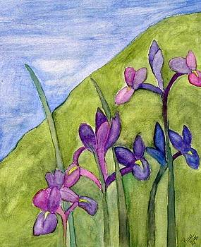 Iris Meadow by Margie  Byrne