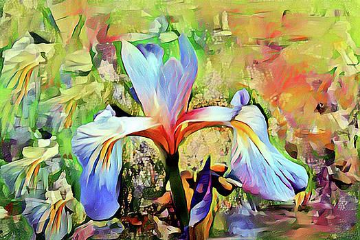 Iris Oh Iris 2 by Don Wright
