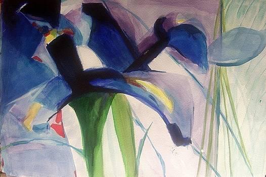 Iris  Power by Nicolas Bouteneff