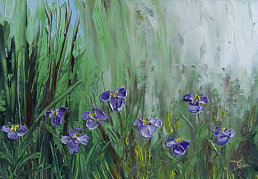 Dee Carpenter - Iris Study
