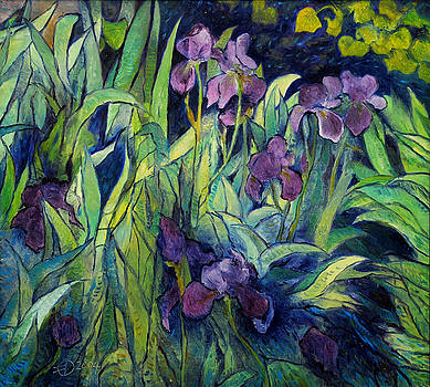 Irises at high altitude Auribeau France 2004   by Enver Larney