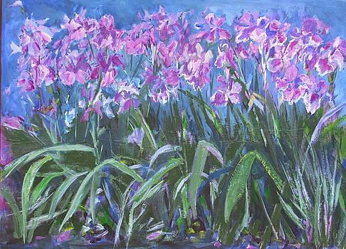 Irises en Mass by Betty Pieper