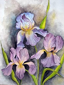 Irises In Purple by Shagufta Mehdi