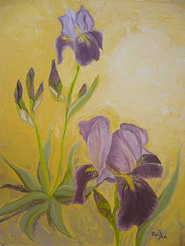 Irises in the vanilla light  by Beata Rosslerova