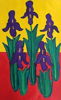 Irises by Matthew Brzostoski