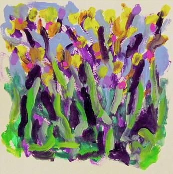 Irises by Thom Duffy