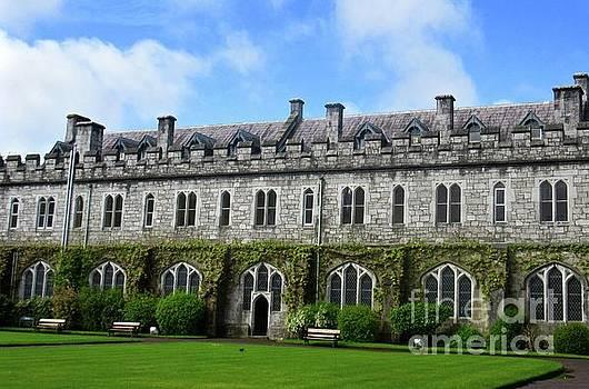Irish Architecture 2 by Crystal Rosene