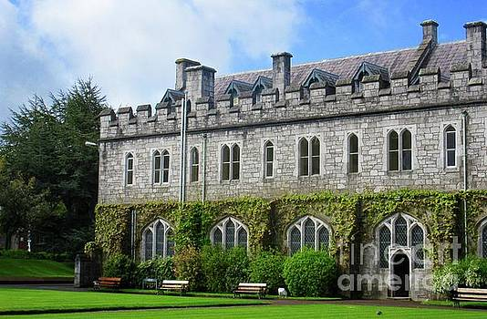 Irish Architecture 3 by Crystal Rosene
