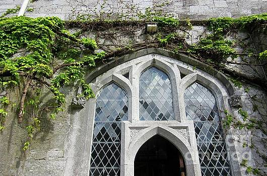 Irish Architecture 4 by Crystal Rosene