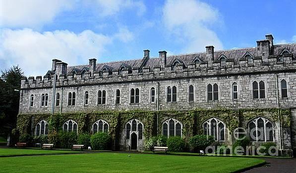Irish Architecture by Crystal Rosene