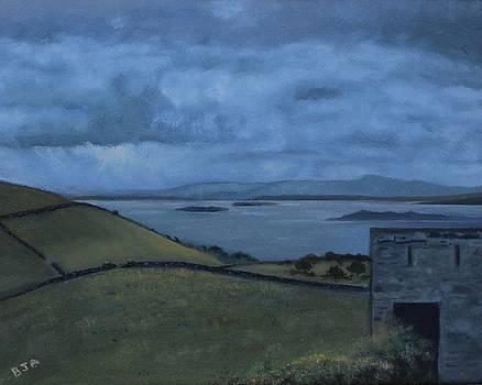 Irish Castle by Barbara Joyce