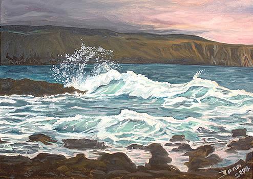 Irish coast by Jana Goode
