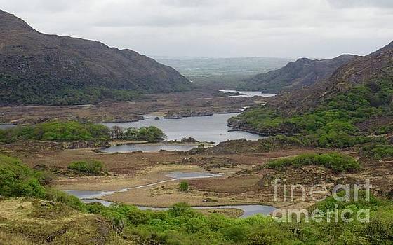 Irish Countryside 2 by Crystal Rosene
