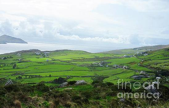 Irish Countryside 5 by Crystal Rosene