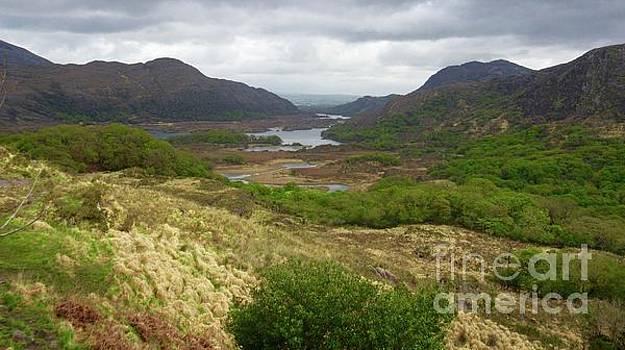 Irish Countryside by Crystal Rosene