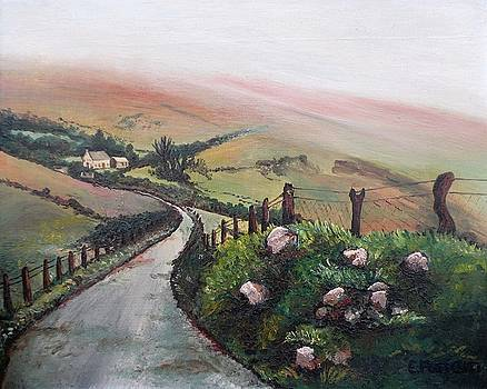 Irish Countryside by Eileen Patten Oliver