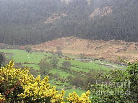 Irish Landscape by Crystal Rosene
