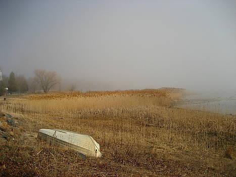 Irish Mist by Sheryl Burns