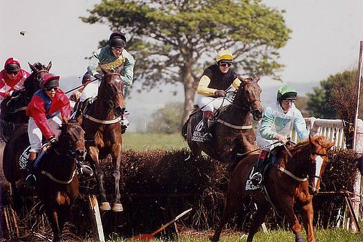 Irish Point-to-Point Horserace - Mallow Ireland by Bob See