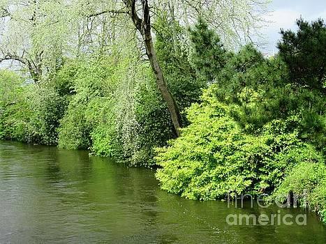 Irish River 2 by Crystal Rosene