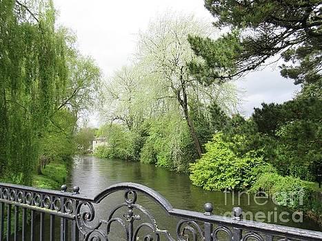 Irish River 4 by Crystal Rosene