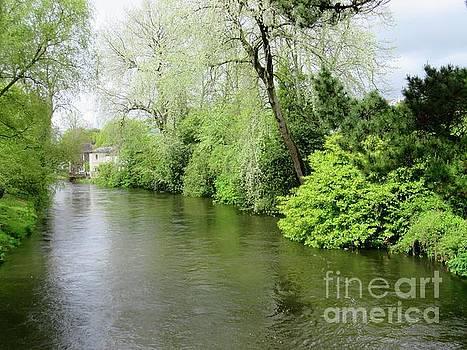 Irish River by Crystal Rosene
