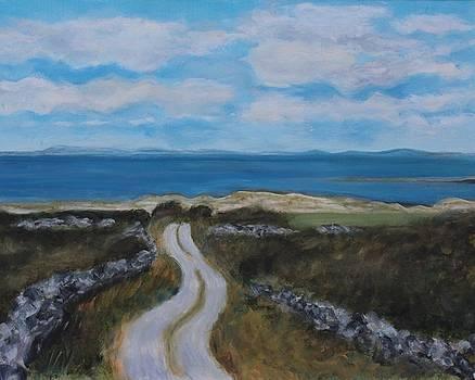 Irish Road by Barbara Joyce