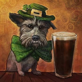 Irish Ruff by Sean ODaniels