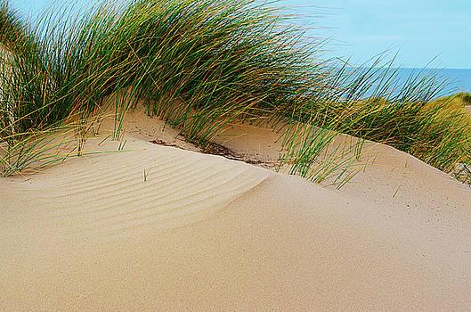 Spade Photo - Irish Sea Sand Dunes