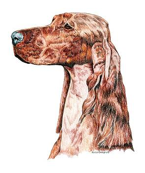 Irish Setter by Kathleen Sepulveda