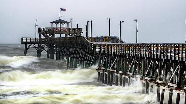Irma Fall Out in South Carolina by David Smith