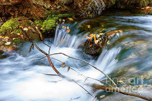 Iron Creek Fall Flowing by Steve Triplett