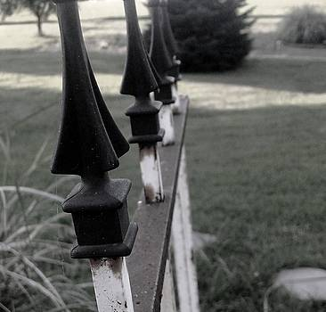 Iron fence by Ali Dover