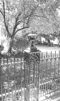 Iron Fence by Sherry  Kepp