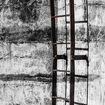 Carol Leigh - Iron Ladder