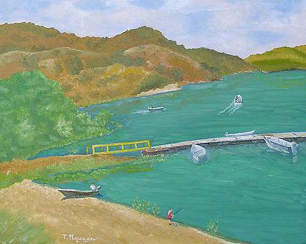 Irvine Lake Orange County California by Thi Nguyen