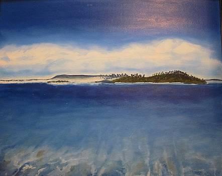Island by Agnieszka Bednarz