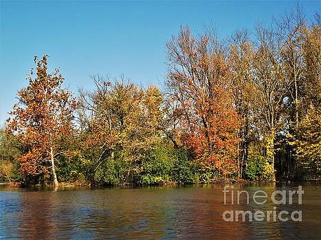 Island Autumn          St. Joseph River             Indiana by Rory Cubel