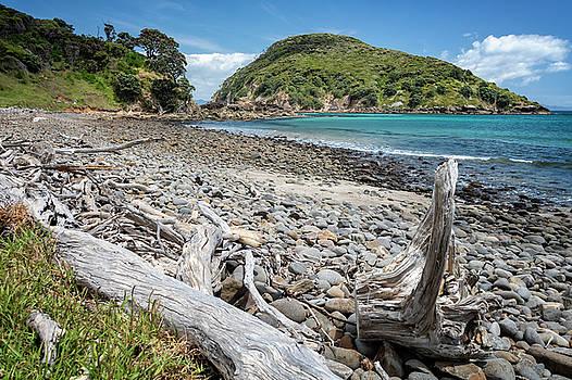 Island Bay Great Barrier Island New Zealand II by Joan Carroll