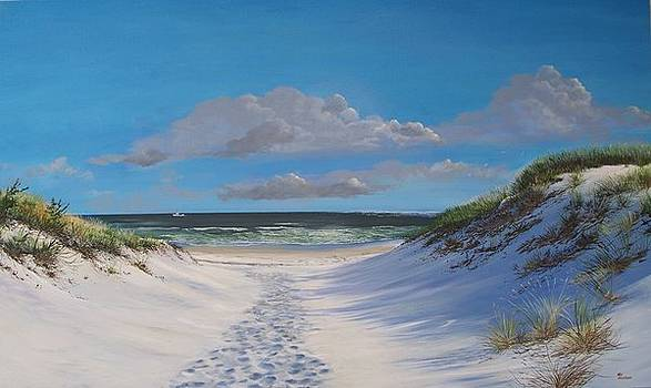 Island Beach Dune Walk by Ken Ahlering