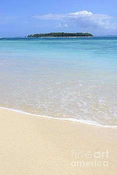Oscar Gutierrez - Island Beach