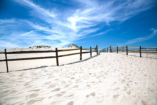 Island Beach State Park New Jersey by Christy Woodrow