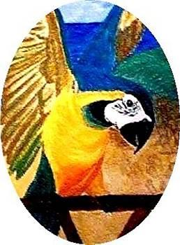 Brenda L Spencer - Island Bird SE
