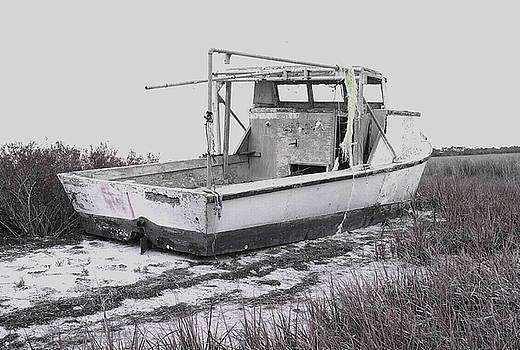 Island Boat  B W by Debbie May