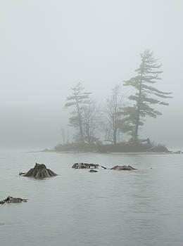 Island in the Fog by Kevin Kludy